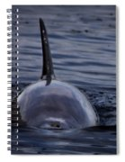 Fins Up Spiral Notebook