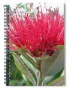 Fiore Rosso E Grasso Spiral Notebook