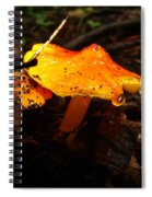 Fire In The Forest - Hygrocybe Cuspidata Spiral Notebook