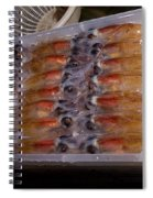 Firefly Squid Processing Spiral Notebook