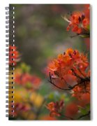 Firestorm Spiral Notebook