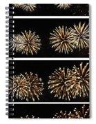 Firework Lifecycle 1 Spiral Notebook