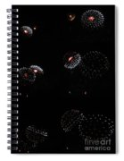 Firework Lifecycle 2 Spiral Notebook
