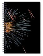 Fireworks Fun 1 Spiral Notebook