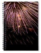 Fireworks Fun 14 Spiral Notebook