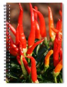 Firey Red Hot Chili Peppers Spiral Notebook