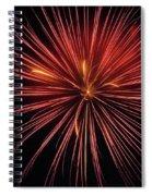 First Glance Spiral Notebook