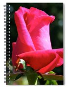 First Petal Spiral Notebook