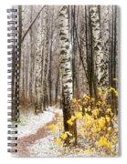 First Snow. Hidden Path Spiral Notebook