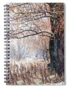 First Snow. Old Tree Spiral Notebook