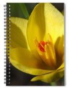 First Yellow Crocus Spiral Notebook