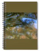 Fish In Rippling Water Spiral Notebook