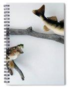 Fish Mount Set 03 A Spiral Notebook