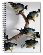 Fish Mount Set 05 A Spiral Notebook