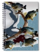 Fish Mount Set 05 B Spiral Notebook
