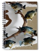 Fish Mount Set 05 C Spiral Notebook