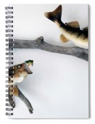 Fish Mount Set 06 A Spiral Notebook