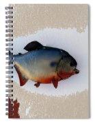 Fish Mount Set 12 C Spiral Notebook