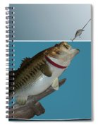 Fish Mount Set 13 D Spiral Notebook