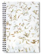 Fish Pond Spiral Notebook