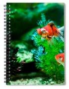 Fish Tank Spiral Notebook