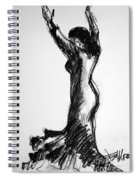 Flamenco Sketch 3 Spiral Notebook