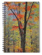 Flaming Fall Foliage Spiral Notebook