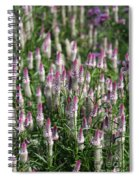 Flamingo Feather Flowers Spiral Notebook