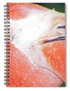 Flamingo Nose Spiral Notebook