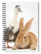 Flemish Giant Rabbit And Call Duck Spiral Notebook