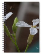 Flight Of The Bee Spiral Notebook
