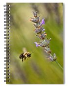 Flight Of The Bumble Spiral Notebook