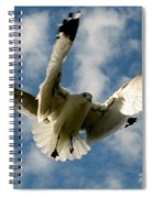 Flights Backed Up Spiral Notebook