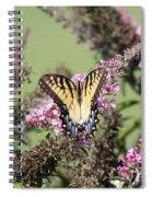 Flitter - Butterfly - Swallowtail Spiral Notebook
