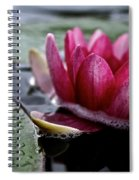 Floating Floral Spiral Notebook