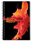 Floating Hibiscus Spiral Notebook