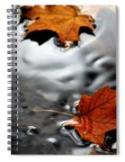 Floating Maple Leaves Spiral Notebook