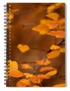 Floating On Orange Fall Leaves Spiral Notebook