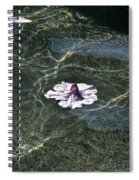 Floating On Reflections Spiral Notebook
