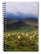 Flock Of Sheep Grazing In A Field Spiral Notebook