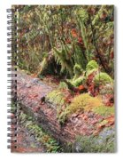 Flooded Bridge Spiral Notebook