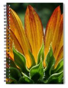 Floral Flaming Fingers Spiral Notebook