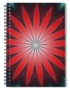 Floral Geometric 102311a Spiral Notebook