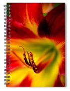 Floral Macro Of A Blossom Spiral Notebook