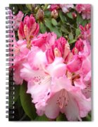 Floral Rhodies Photography Pink Rhododendrons Prints Spiral Notebook
