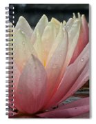 Floral Wonders Spiral Notebook