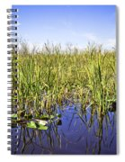 Florida Everglades 5 Spiral Notebook