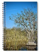 Florida Everglades 8 Spiral Notebook