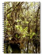 Florida Everglades 9 Spiral Notebook
