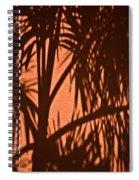 Florida Palm Shadow Spiral Notebook